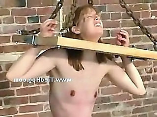 Bdsm Bondage Torture Tied Bdsm Abuse
